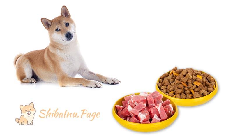 comida cruba para shiba inu