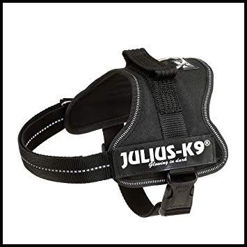 julius k9 el mejor arnes para perros