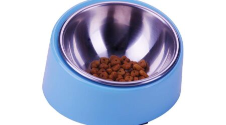 Comederos para perros shiba